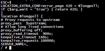 nginx proxy environment variables